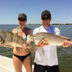 a picture of a redfish and black drum