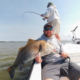 a picture of a blackdrum caught in Crystal river