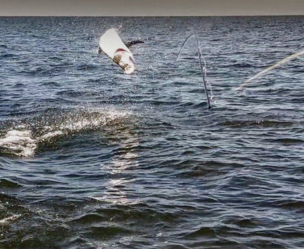 A picture of Crystal River Fishing Charters Crystal River Inshore Fishing August 2021