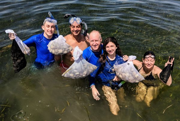 A picture of Crystal River Fishing Charters The 2021 Guide To Florida Scalloping