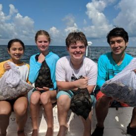 a picture of 4 young people holding bags of scallops