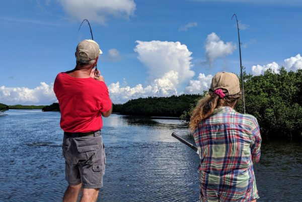 A picture of Crystal River Fishing Charters Quick Tips: Inshore Fishing Rods