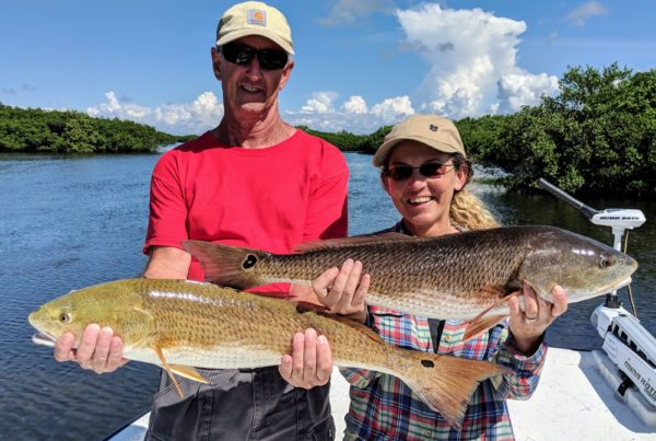 A picture of Crystal River Fishing Charters Florida Redfish Fishing