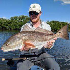 Redfish on Fly Rod