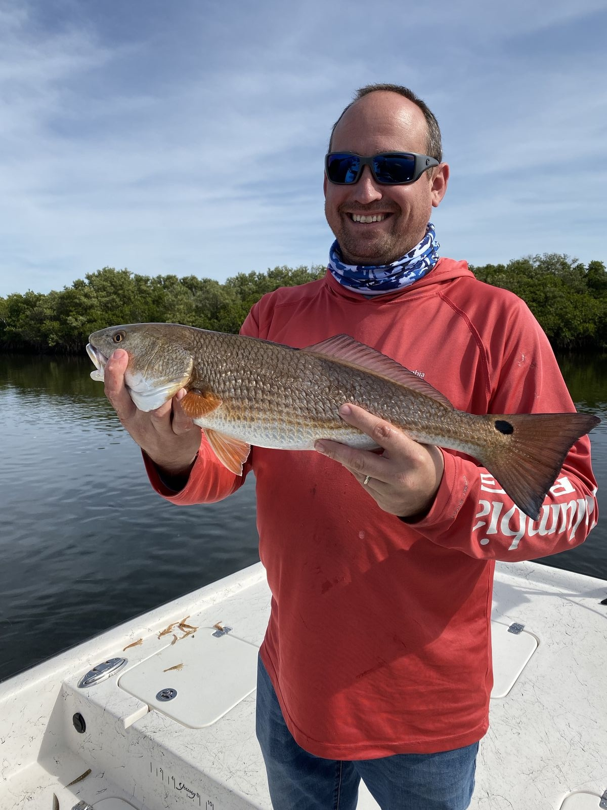 I know it's hard to believe but with air tempratures huvering in the mid to upper 70's fishing has been as hot as ever. It seems as if the fish are already in their early spring patterns. Redfish and trout have been inhaling everything from live bait to topwater lures. For the past couple of weeks my anglers have been landing double digit redfish dayin and dayout. The bait of choice has been a 1/4 ounce jig head with a glow in the dark Berkley Gulp shrimp tail. They say this stuff works better than live bait and Man Alive let me tell you, I am a firm believer this stuff cold outfish live bait this month 2:1.