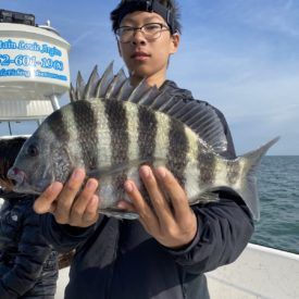 a fisherman with a sheepshead