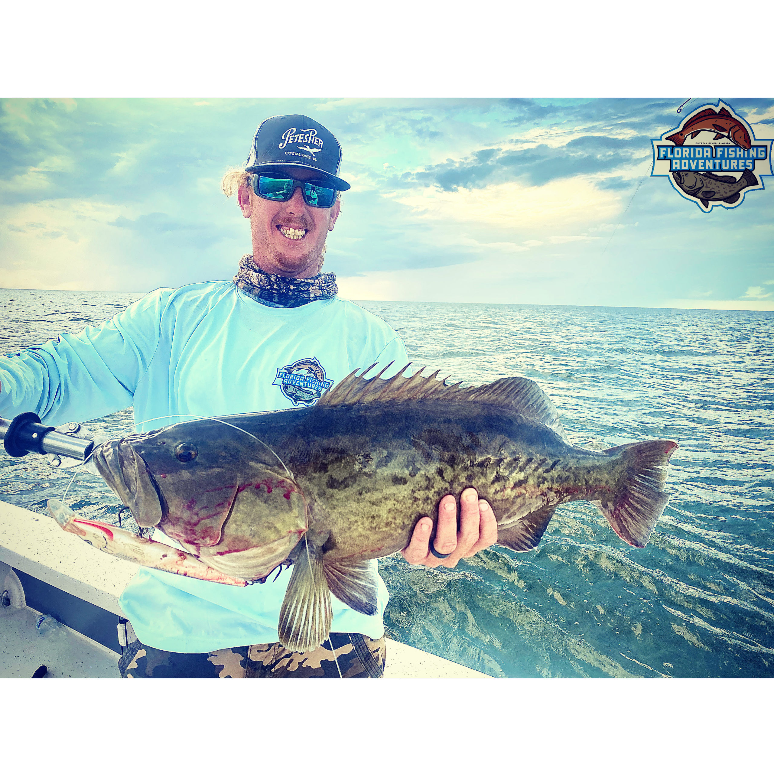 A client on a grouper fishing charter in the shallow bays of crystal river showing a large grouper he caught