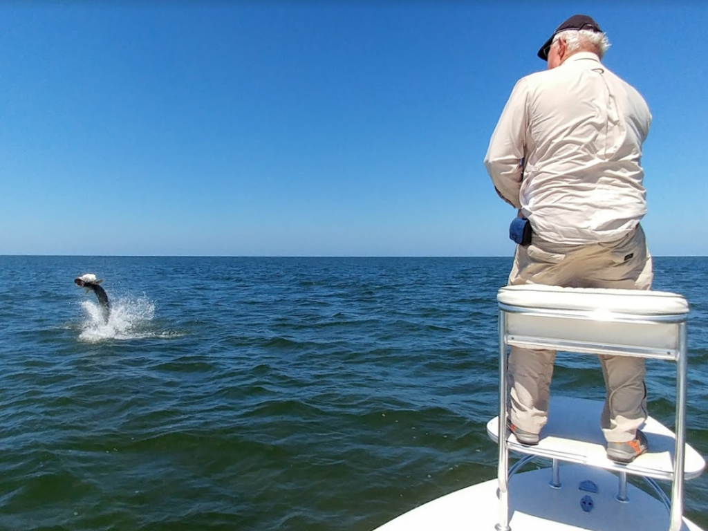 a picture of a fisherman fighting a tarpon in Crystal river